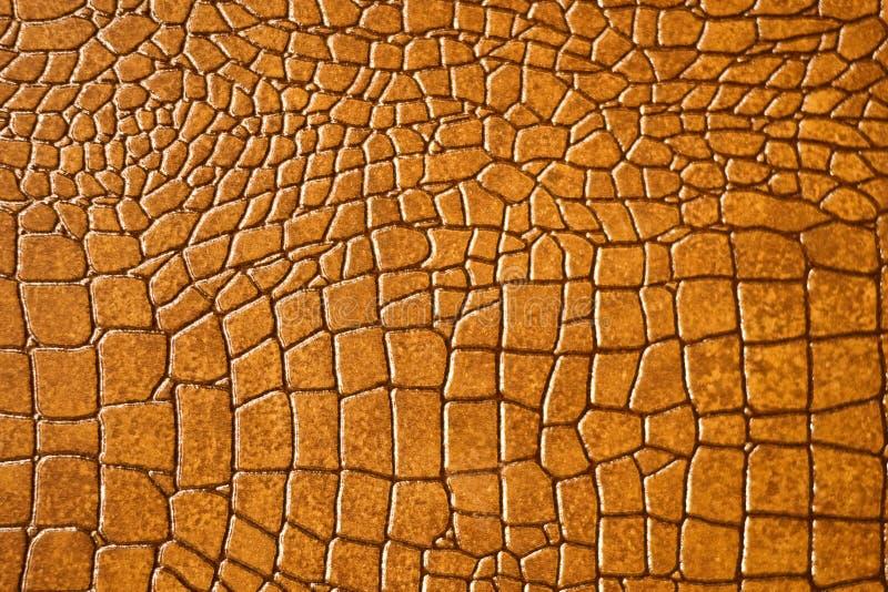 коричневая текстура snakeskin крокодила стоковые изображения rf