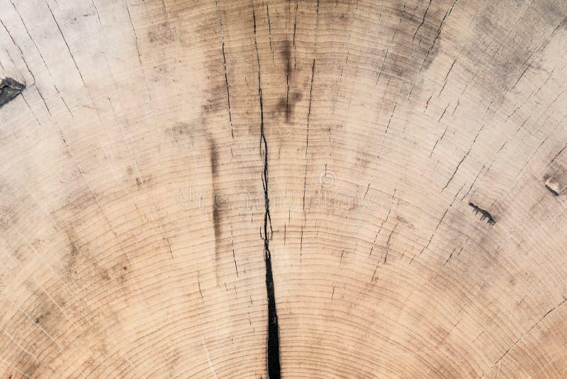 коричневое плотное строение вверх по древесине абстрактная предпосылка стоковое изображение