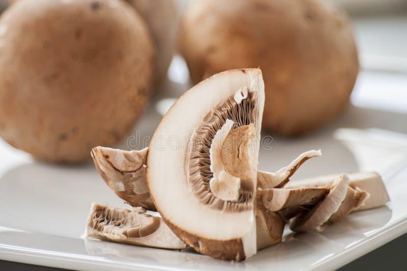 коричневые свежие грибы стоковое изображение rf