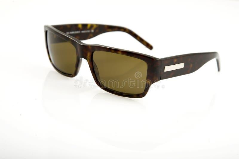 коричневые солнечные очки стоковые изображения rf