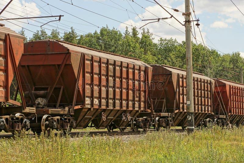 Коричневые экипажи утюга в поездке на поезде на железной дороге в зеленой траве стоковая фотография rf