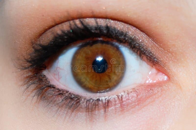 коричневый глаз стоковая фотография