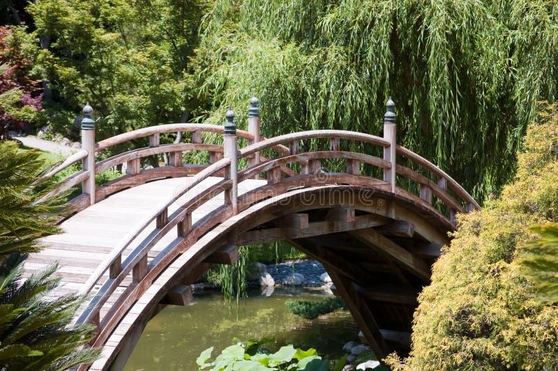 коричневый цвет моста стоковые изображения rf
