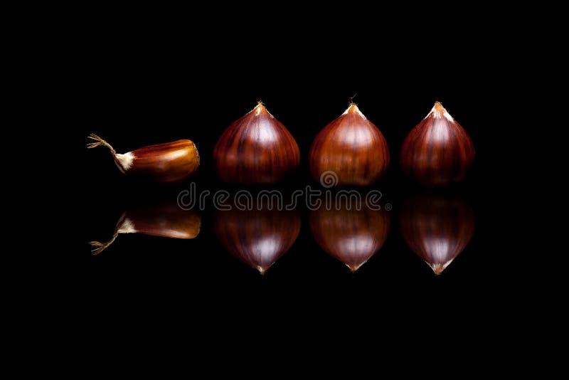 4 коричневых каштана изолированного на черной предпосылке стоковое изображение