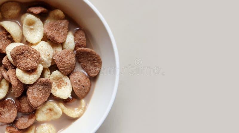 Корнфлексы ванили и шоколада окунули в шоколадном молоке в белом шаре в светлой предпосылке стоковые фото