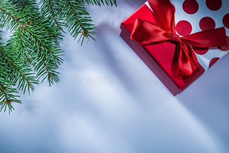 Коробка ветви сосны присутствующая на белой предпосылке стоковая фотография