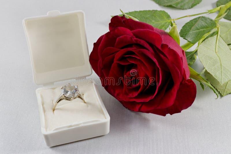 Коробка красной розы и белых с золотым обручальным кольцом стоковые изображения