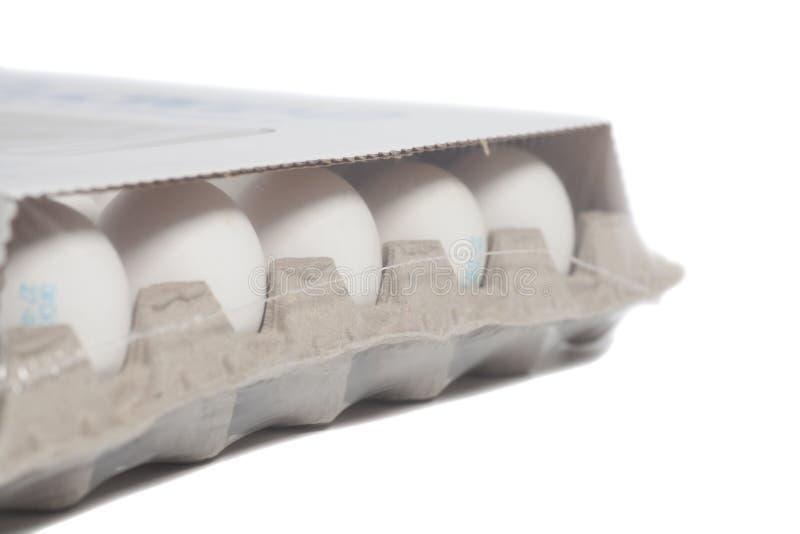 Коробка яичка картона с яичками цыпленка белыми стоковая фотография rf