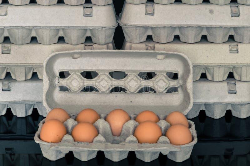 Коробка яичка с 9 органическими яичками цыпленка внутрь стоковое фото