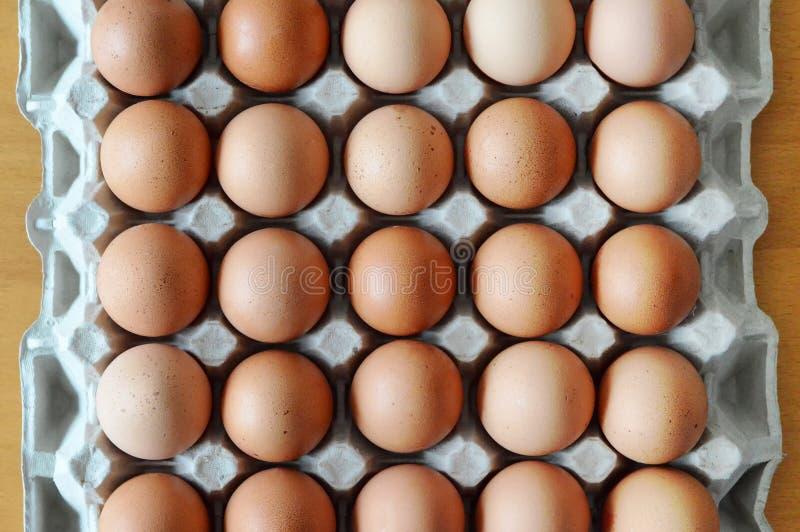 коробка eggs свежая стоковое изображение rf