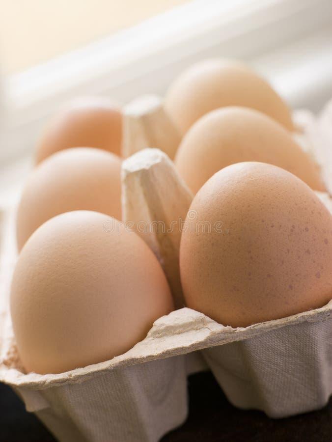 коробка eggs свежая стоковое фото