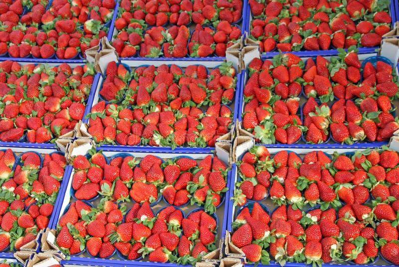 Download Коробки вполне сочных красных клубник и проданные на местном рынке Стоковое Фото - изображение насчитывающей съешьте, здоровье: 37927756