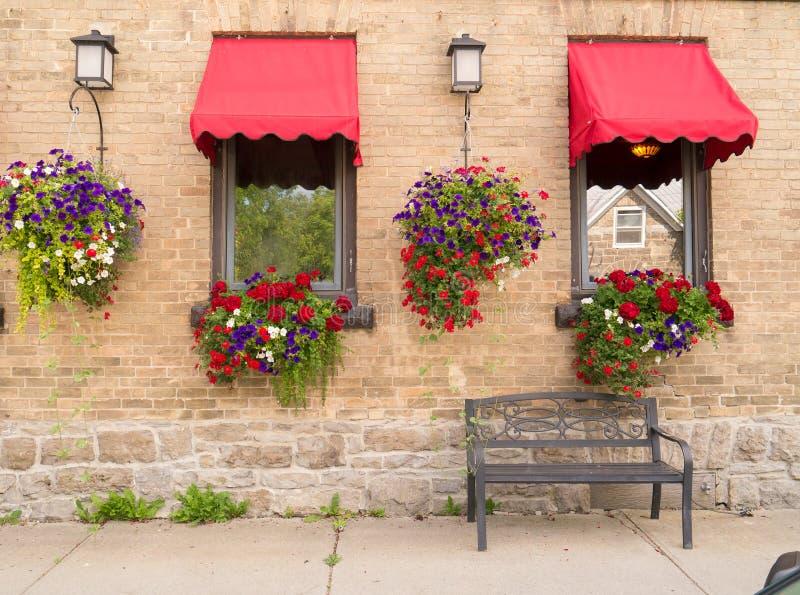 Коробки цветка и вися заводы стоковое фото rf