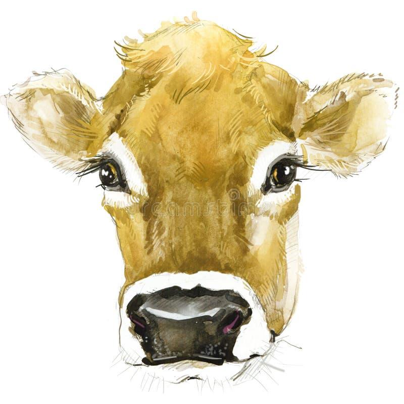 Корова Иллюстрация акварели коровы Порода доя коровы иллюстрация штока