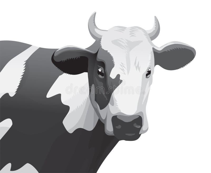 корова иллюстрация штока