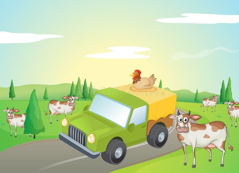Коровы и цыпленок иллюстрация вектора