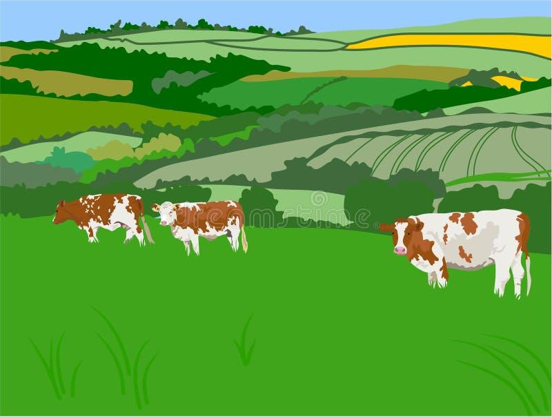 коровы пася иллюстрация штока