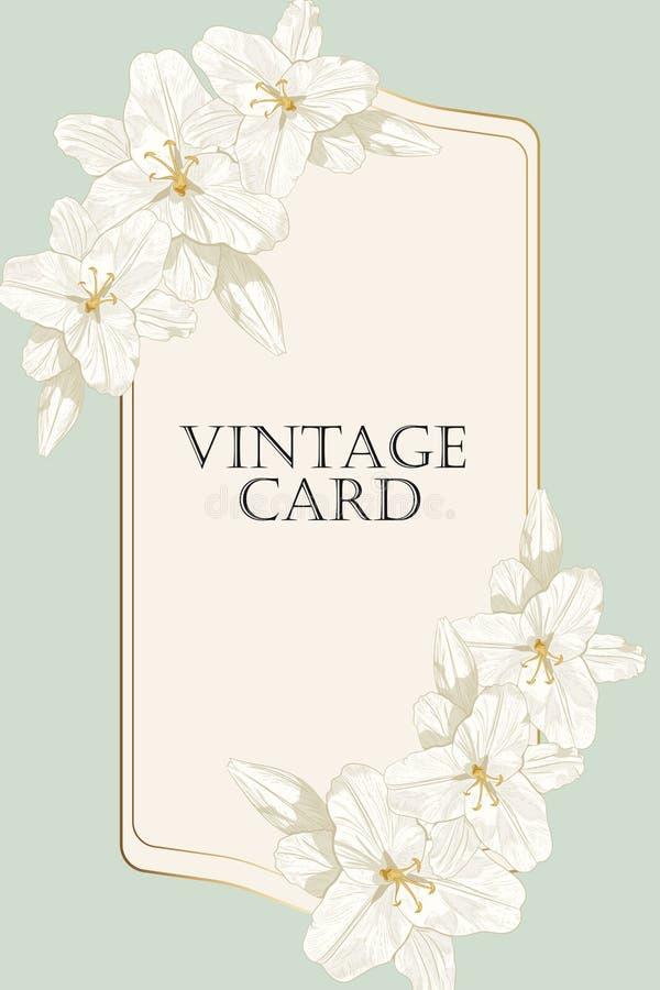 Королевские лилии, можно использовать как поздравительная открытка, карточка приглашения для wedding, день рождения и другие праз иллюстрация штока