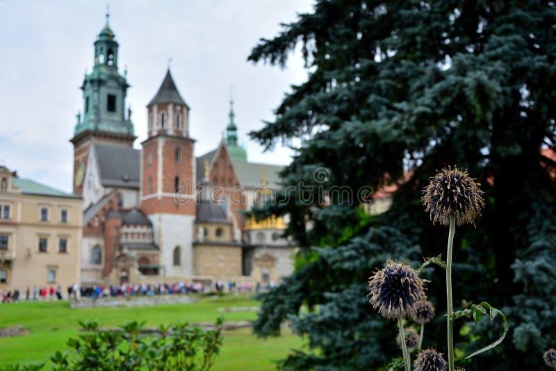 Королевский замок Краков стоковая фотография rf