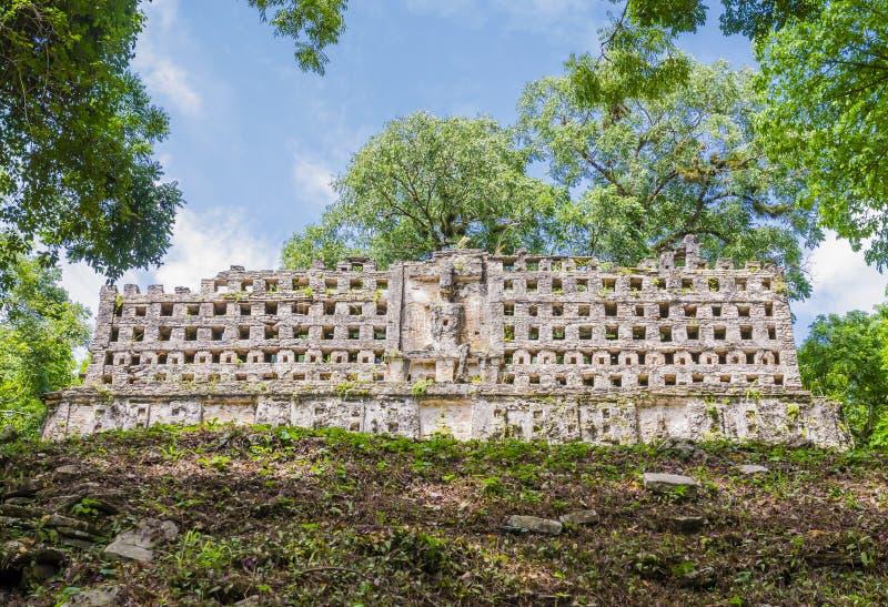 Король Дворец в руинах Yaxchilan майяских, Чьяпас, Мексика стоковые фото