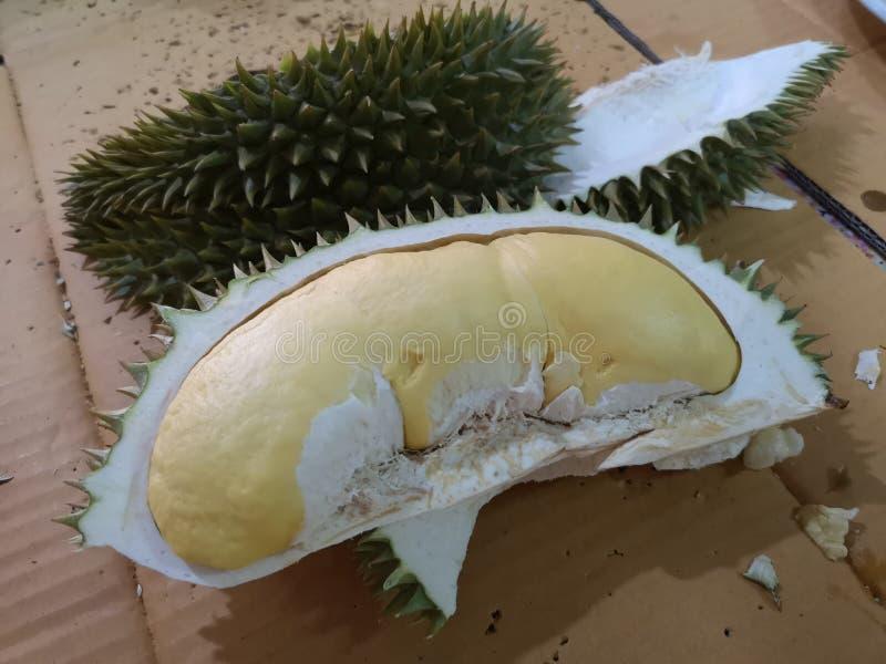 Король плода плоть и зрелый дуриан внутрь желтая и зеленая острая кожа стоковая фотография rf
