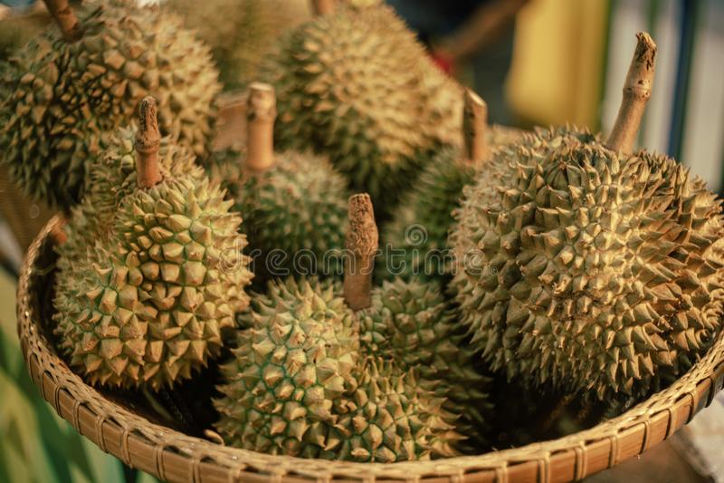 Король плодов, дуриан тропический плод Юго-Восточной Азии стоковые изображения rf