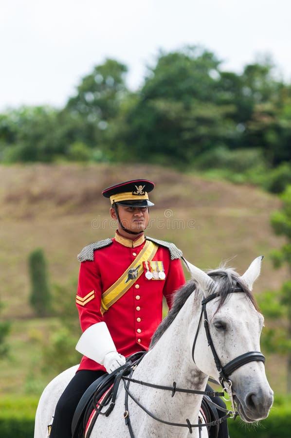 Королевские предохранители стоковая фотография