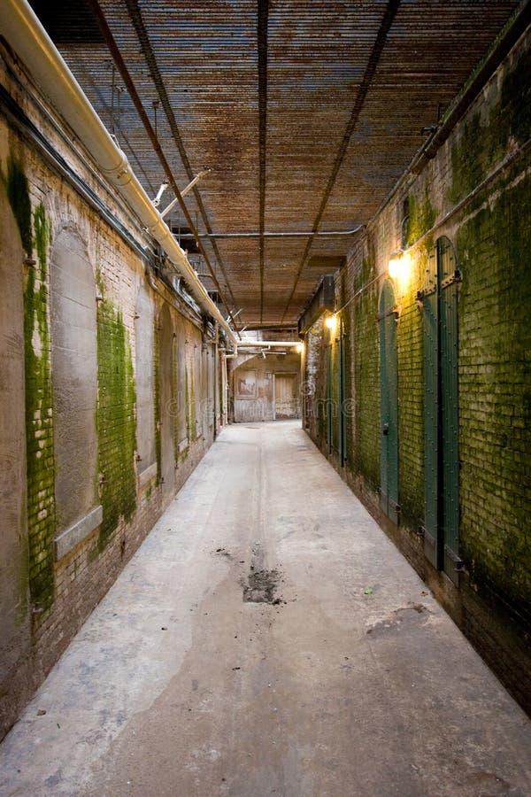 корридор alcatraz старый стоковое фото rf