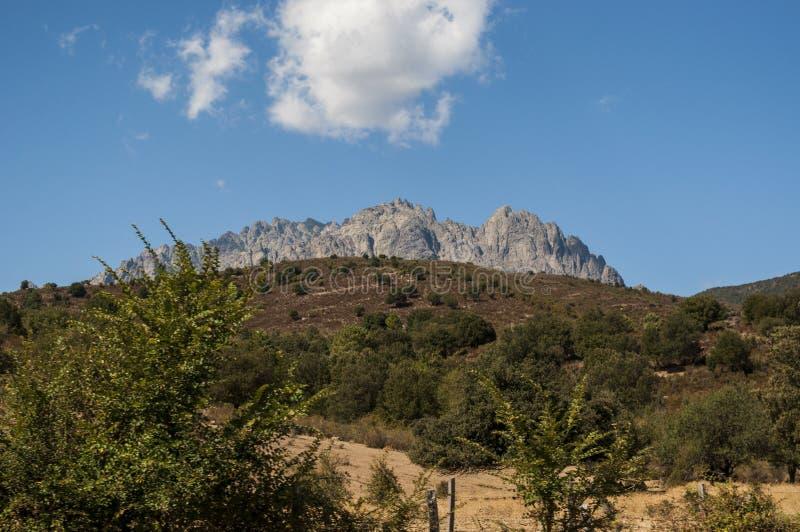 Корсика, держатель Cinto, одичалый ландшафт, Haute Corse, верхнее Corse, Франция, Европа, Haut Asco, долина Asco, высокий центр К стоковое фото rf