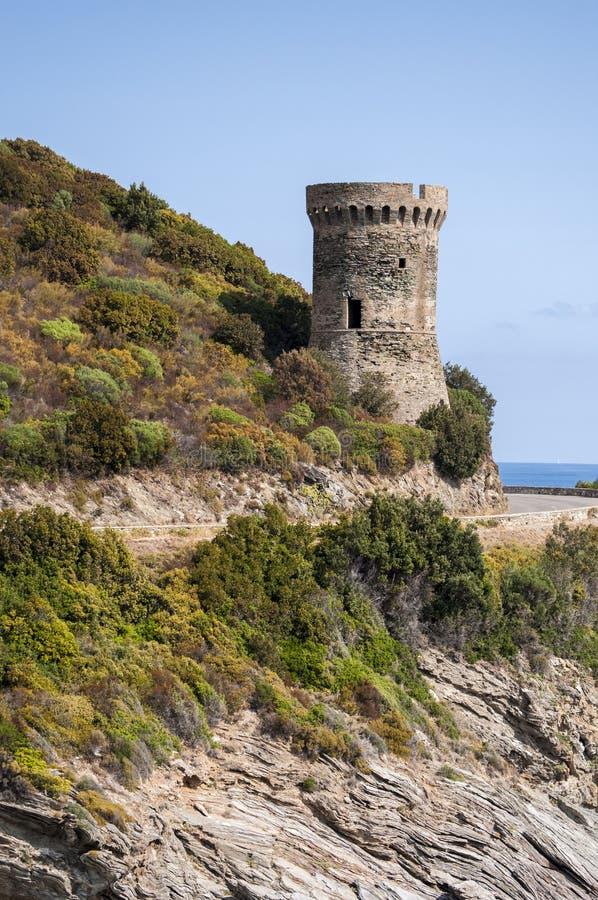 Корсика, крышка Corse, башня Losse, башня l ` Osse, Haute Corse, Genoese башни, Франции, Европы, острова, извилистой дороги стоковое фото rf