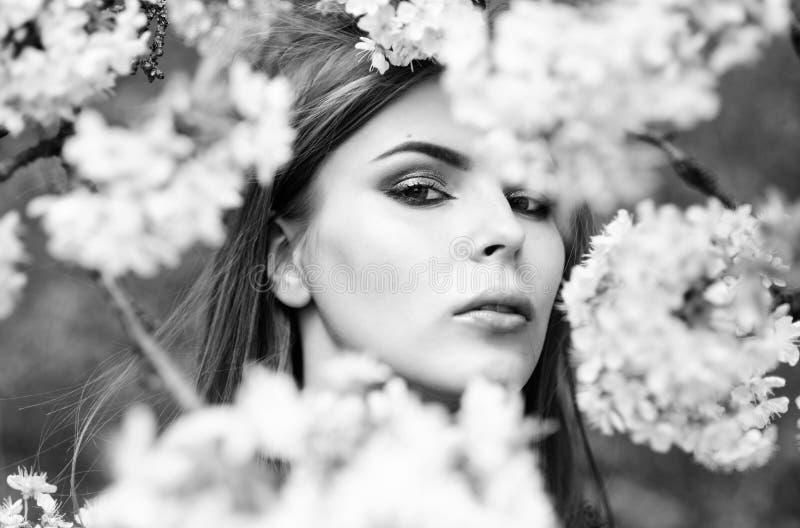 Косметики окружающей среды органические Свежесть весны Естественная концепция косметик Забота кожи макияжа Зацветая деревья стоковое фото rf