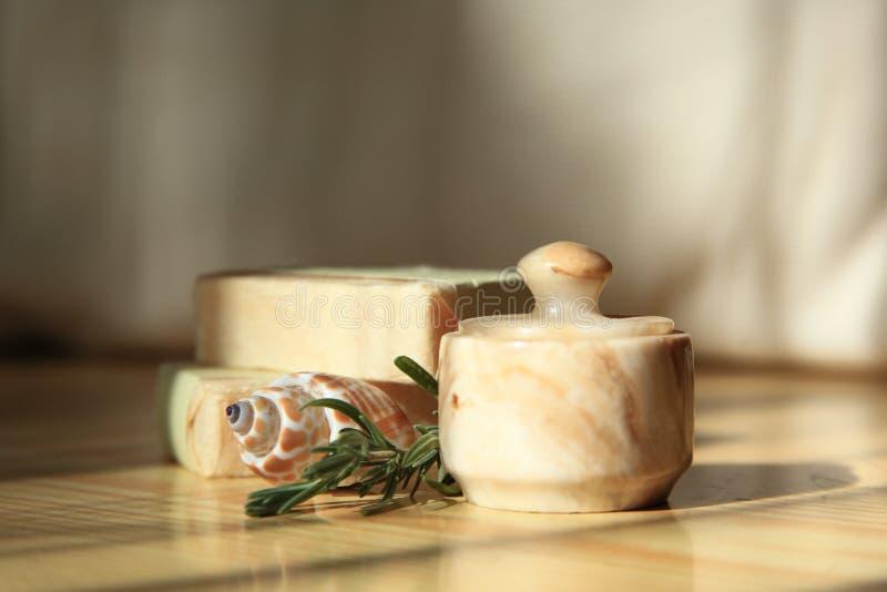 косметическая раковина Стоковые Фото