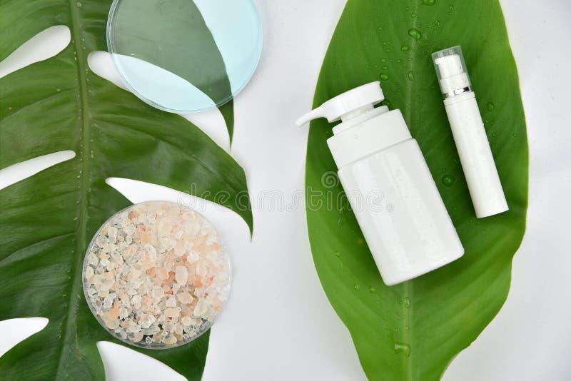 Косметические контейнеры бутылки с зелеными травяными листьями, пустым ярлыком для клеймя модель-макета стоковые фото