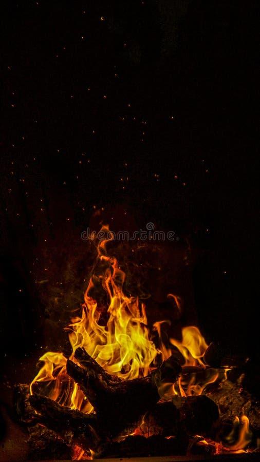 Костер горит на ноче стоковые изображения rf