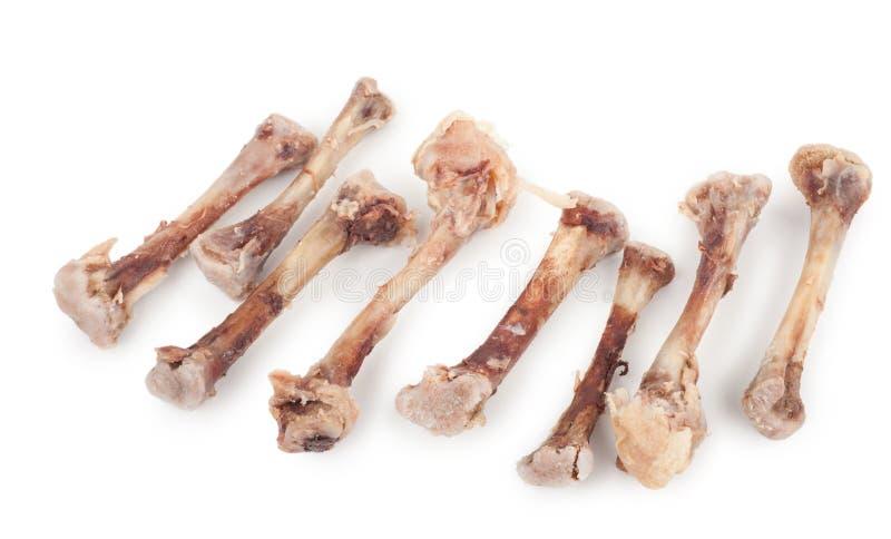 Косточки цыпленка стоковое изображение