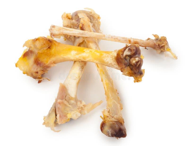 Косточки цыпленка стоковая фотография rf