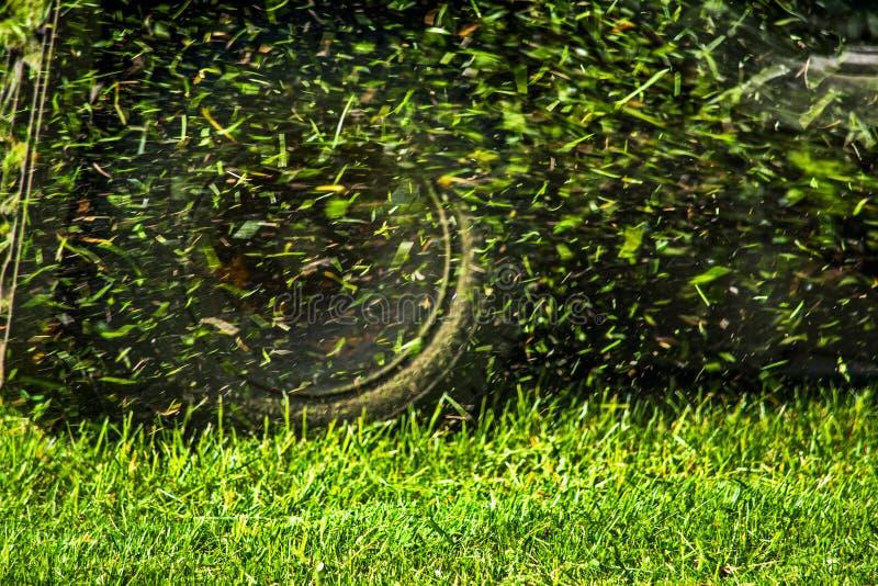 Кося трава летает от травокосилки стоковое изображение