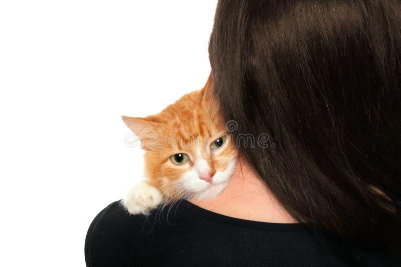 котенок взваливает на плечи женщин стоковое фото rf