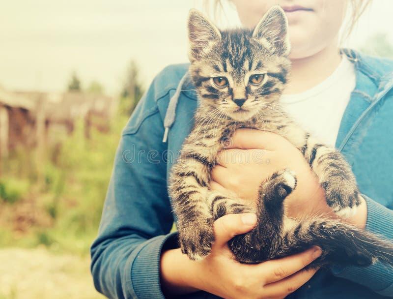котенок девушки немногая стоковая фотография