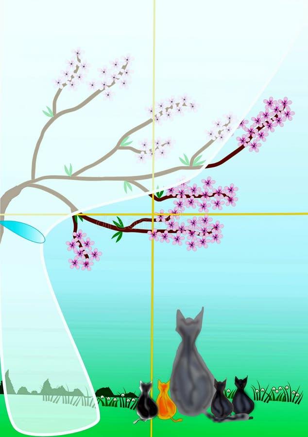 Коты на окне стоковая фотография