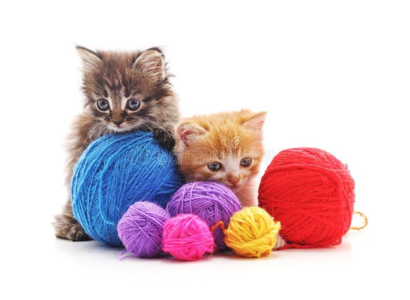 Котята с шариками пряжи стоковая фотография rf