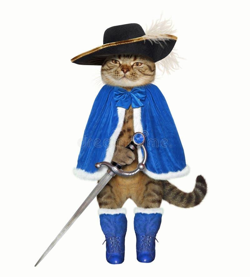 картинка кот в мантии