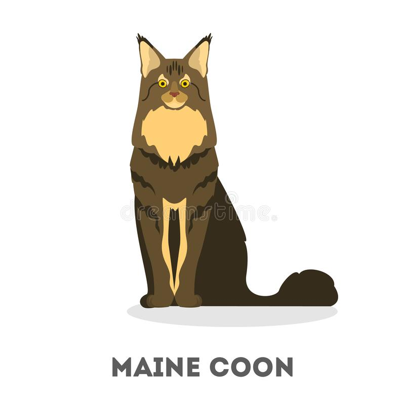 Кот енота Мейна Милое меховое животное Отечественный любимец иллюстрация штока