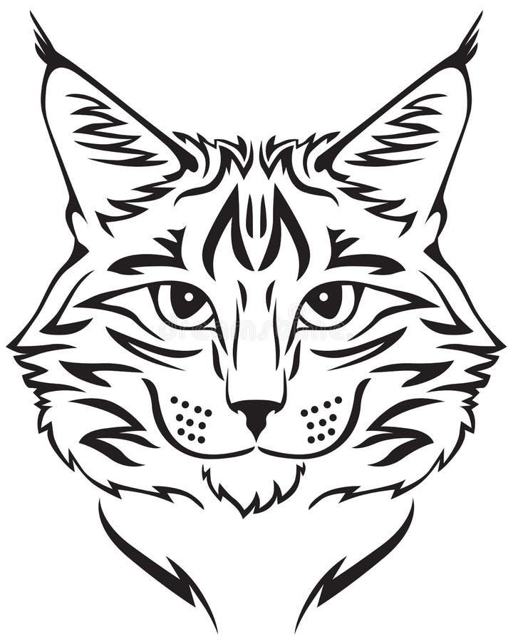 Кот енота Мейна иллюстрация штока