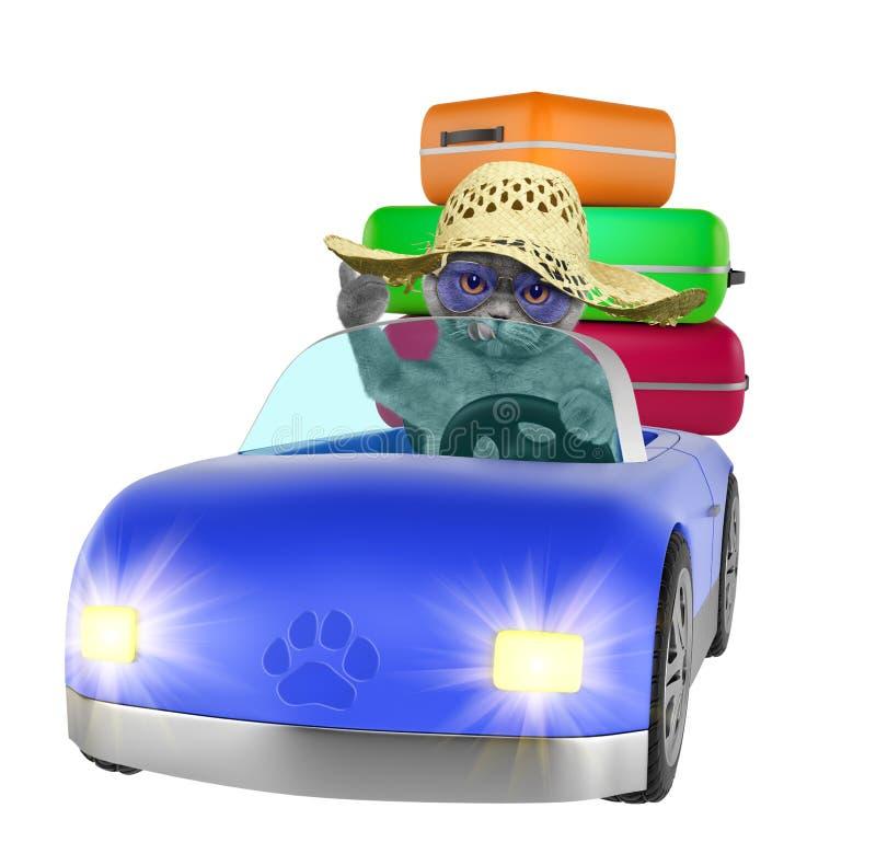 Кот идет путешествов автомобилем Изолировано на белизне иллюстрация штока