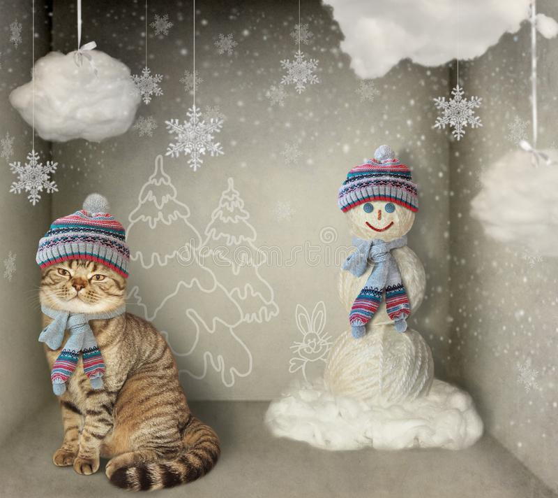 Кот и снеговик стоковая фотография