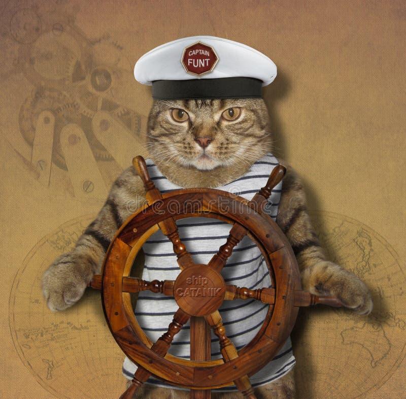 Кот капитан корабля стоковое изображение rf