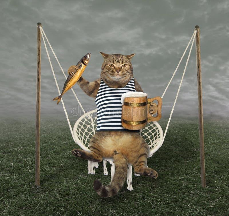 Кот на качании с пивом 2 стоковое фото rf