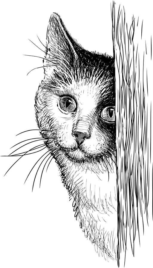 Кот смотреть прищурясь иллюстрация вектора