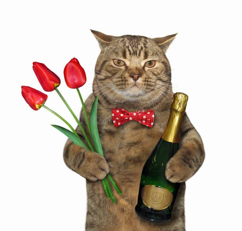 Кот с вином и тюльпанами иллюстрация штока